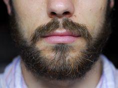 The beard is back.jpg