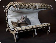 Elegancia en camitas para gatos