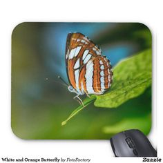 White and Orange Butterfly Mouse Pad