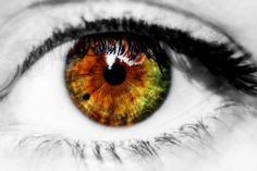 eye color close up - Google Search