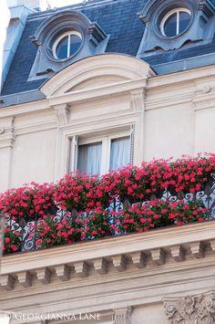 Paris: Colorful flowers on a petite balcony.