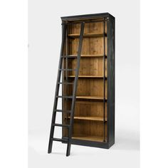 Four Hands Irondale Ivy Bookcase and Ladder in Matte Black