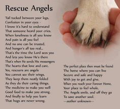 Rescue Angels