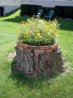 Tree Stump For Garden Art. you can use tree stumps in your garden as planters and they will give you a special charm that everyone will be admired. Garden Yard Ideas, Lawn And Garden, Garden Projects, Garden Art, Fairies Garden, Garden Ideas With Bricks, Tree Stump Decor, Tree Stump Planter, Ideas For Tree Stumps