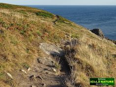 13-best-coastal-paths-brittany-finistere