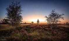 Sunset at Mechelse Heide - Limburg - Belgium