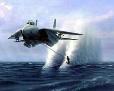 I feel the need...the need for speed!, I'd try it if we start with a water take off, maybe a harrier jet would work !