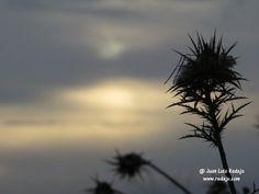 Salida del sol un día nublado desde la Carretera de Lillo en La Guardia (Toledo)