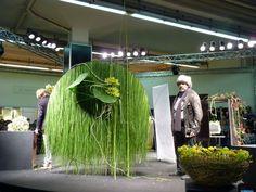 Gregor Lersch :: FDF - Fachverband Deutscher Floristen e.V. Bundesverband: Foto-Galerie
