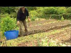 Jardinage sans travail du sol. Yves Gillien, un puits de savoir pour vos potagers !