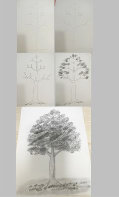 How to Draw a Tree: Step by Step Practice for Beginners Leaf Drawing, Nature Drawing, Manga Drawing, Drawing Sketches, Pencil Drawings, Tree Drawings, Drawing Practice, Drawing Skills, Drawing Reference
