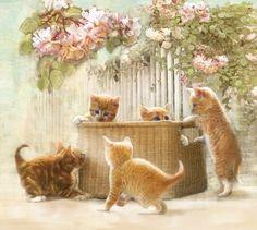 https://i.pinimg.com/736x/36/db/57/36db57540f844d51b7ea4a02cfde9671--orange-tabby-kittens-tabby-cats.jpg