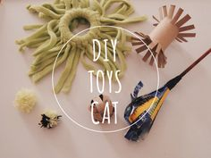 DIY cat – liexlou's Blog