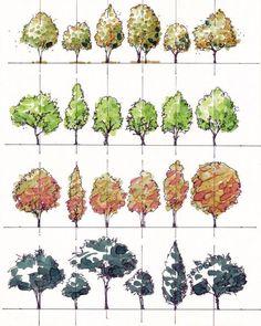 Sketchbook Architecture, Landscape Architecture Drawing, Landscape Sketch, Landscape Design Plans, Landscape Drawings, House Landscape, Computer Architecture, Conceptual Architecture, Architecture Diagrams