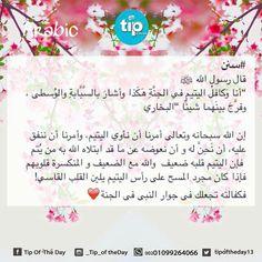 اليتيم  #tip_of_the_day #life #daily #sunan #teachings #islamic #posts #islam #holy #quran #good #manners #prophet #muhammad #muslims #smile #hope #jannah #paradise #quote #inspiration