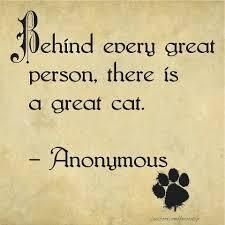 Behind every great person, there is a great cat. or vice versa :) Crazy Cat Lady, Crazy Cats, Big Cats, Cool Cats, Cats And Kittens, Cats Meowing, Grand Chat, Amor Animal, Animal Pics