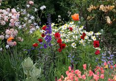 We are stardust/billion year old carbon/&w got to get ourselves back to the garden. - Joni Mitchell. I would want a wildflower garden! So sweet