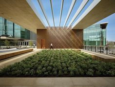 NBBJ's Gates Foundation in Seattle enlivens surroundings to inspire workers.