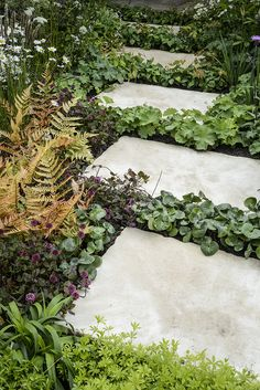 Find the best garden designs & landscape ideas to match your style. Browse through colourful images of gardens for inspiration to create your perfect home. Garden Paving, Garden Steps, Garden Paths, Diy Garden Projects, Garden Crafts, Outdoor Plants, Outdoor Gardens, Woodland Garden, Garden Pictures