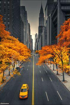 ~~New York Autumn Dreams....by konstantinos metallinos~~