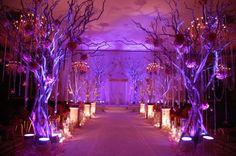 Great entrance lighting
