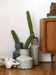 Cactus and pottery, great combination! >> It is! Love it!