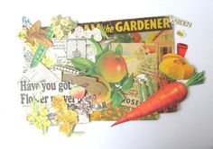 Garden ephemera scrapbook kit: pack of 50 vintage paper pieces. Craft pack for scrapbooks, journaling, collage, paper craft.