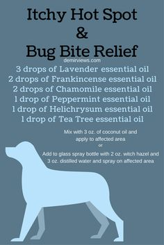 Did your dog get a flea or tick bite? Does your dog have a hot spot? Mix up this blend and apply to soothe the itch and irritation demirviews.com
