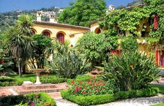 Menton - Jardin Botanique Exotique du Val Rahmeh #visitcotedazur