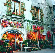 France......where everything is prettier than it should be.         Annecy, France, by Jules. I have not forgotten about France, where everything is prettier than it should be. I think life is photoshopped in France.