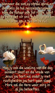 Afrikaanse Quotes, Easter Quotes, Goeie Nag, Angel Prayers, Special Quotes, Sleep Tight, Night Quotes, Getting To Know, Good Night