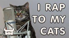 I RAP TO MY CATS | Dan Bull