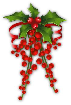 Mistletoe Decor