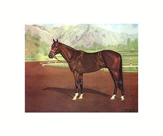 Tomy Lee (1956–1971)Thoroughbred racehorse bay stallion bred in England sired by Tudor Minstrelbwho won the 1959 Kentucky Derby defeating Sword Dancer, First Landing, Royal Orbit and the filly Silver Spoon. Tomy Lee became the 2nd non-American bred horse to ever win the Kentucky Derby