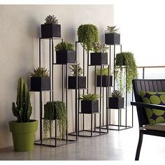 Quadrant Plant Stand in Garden, Patio | Crate and Barrel