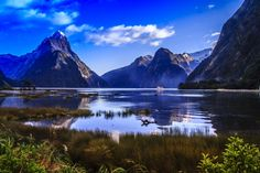 We loved visiting New Zealand as there is just so much to see and do in this beautiful country. There are a lot of tourist spots, however....Read More.