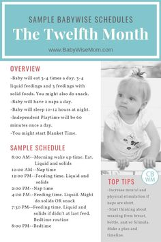 Sample Babywise schedules twelfth month schedule overview and tips. Sample schedules for an 11 month old using the Babywise method. This is the month of life. Baby schedules for weeks old. Newborn Schedule, Baby Sleep Schedule, Toddler Schedule, Baby Wise Schedule, Baby Massage, 11 Month Old Schedule, Baby Schlafplan, Baby Monat Für Monat, Tips