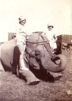 Hagenbeck-Wallace Circus 1937 #2