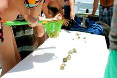 Destin Vacation Ideas, Destin Snorkel, Palazzo by the sea, Fudpuckers, Destin Florida, Seaside Florida, Gulfarium