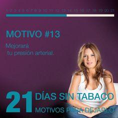 Motivo 13