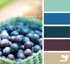 Design Seeds Blueberry! A fun color to design with.