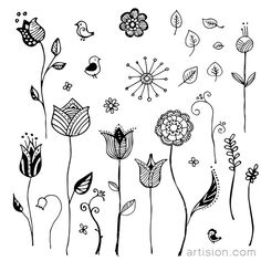 Free vector floral ornaments
