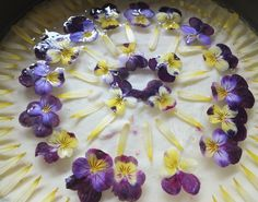 Maddocks Farm Organics Elderflower and viola cheesecake. Recipe at http://maddocksfarmorganics.blogspot.co.uk/2013_05_01_archive.html