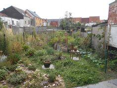 365 dagen oogsten - eetbare stadstuin in Sint-Amandsberg - HOUDBAAR