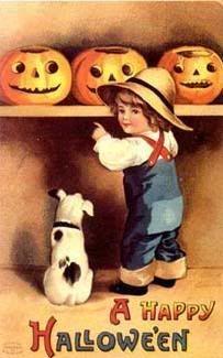 photo pumpkins.jpg
