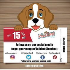 Join our community and get rewarded! www.thepawsland.com #dogs #freeshippingusa #animallovers #petsagram #petsrule #petlovers #dogs #dogsofinstagram #ilovemydog #instagramdogs #dogstagram #lovedogs #doglover #instadog #woof #petclothing #swag #bed #guardiangeaf #onlineshopping #boutique #adorable #personaltrainer #trainer #cool #buynow #sales #cats #catsofinstagram #coupon