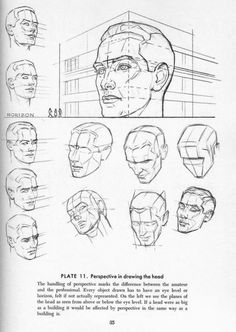 Perspective in drawing the head.
