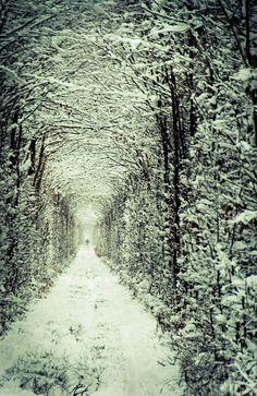 aşk tüneli - Tunnel of #Love #eCift