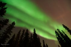 Three bands of aurora, the northernmost with some pinks