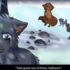 I'm a fan of the Warrior cats. BLUESTAR AND OAKHEART FOREVER